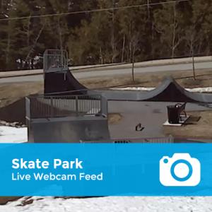 feed-skate-park